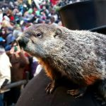 groundhog-day-2017